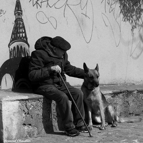 Le vieil homme et son chien-blog