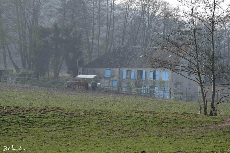 blog-bc-2015-12 c'est une maison bleue