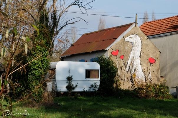 blog-bc-2016-40-prairie-saint-martin