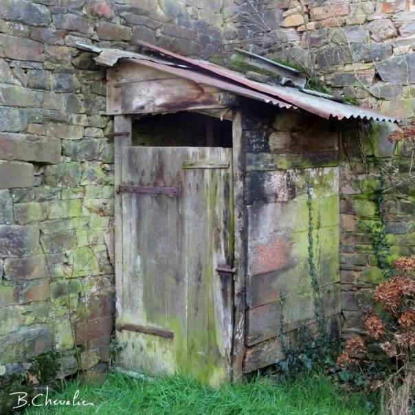 blog-bc-2020-6-La cabane au fond du jardin